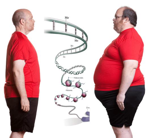 De ce ar trebui să dieta hipocalorica