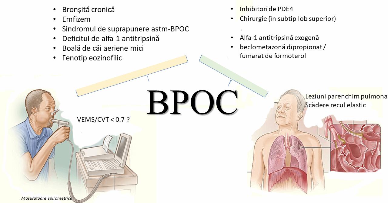 BPOC-fenotipuri-tratament-spirometrie-fiziopatologie.png