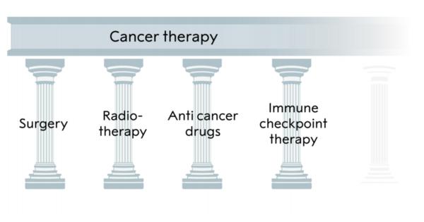 Pilonii tratamentului oncologic