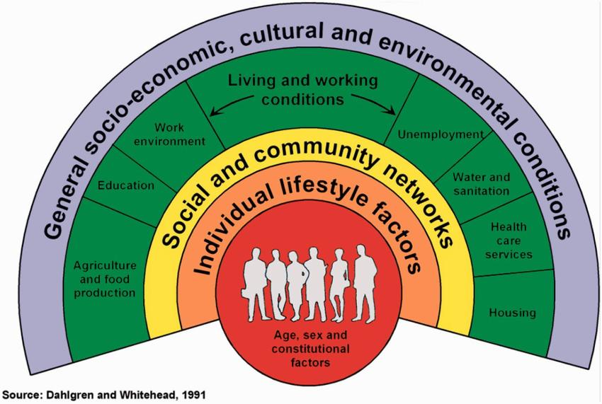 Factorii determinanți ai sănătății
