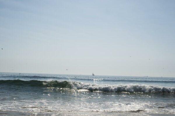 mare-plaja-internet-metafora