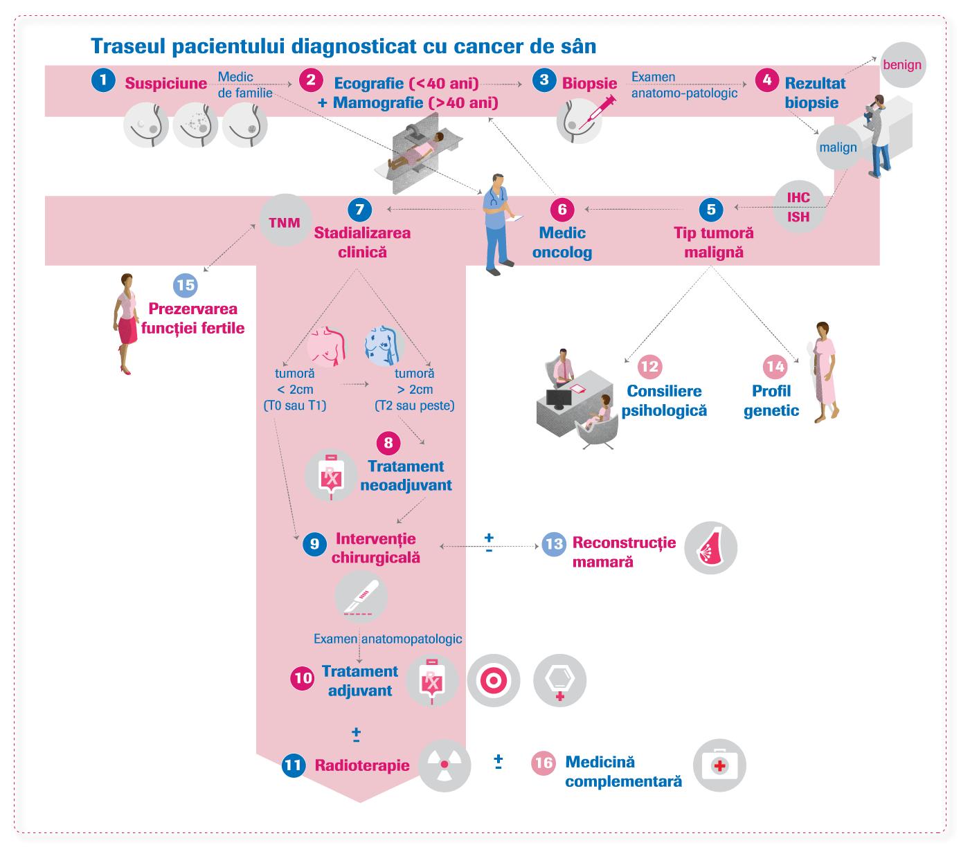 Traseul pacientului diagnosticat cu cancer de sân