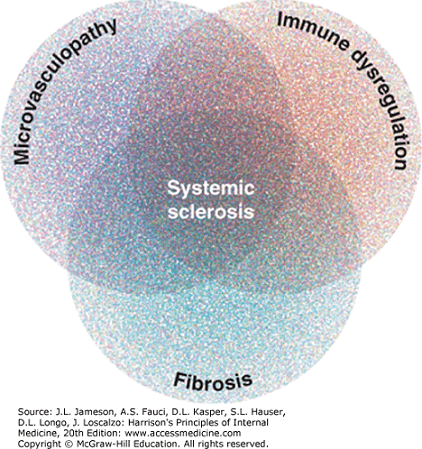 Sclerodermie - fiziopatologie