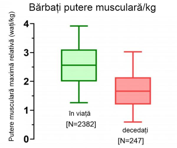 putere-musculara-barbati-vi-morti-grafic