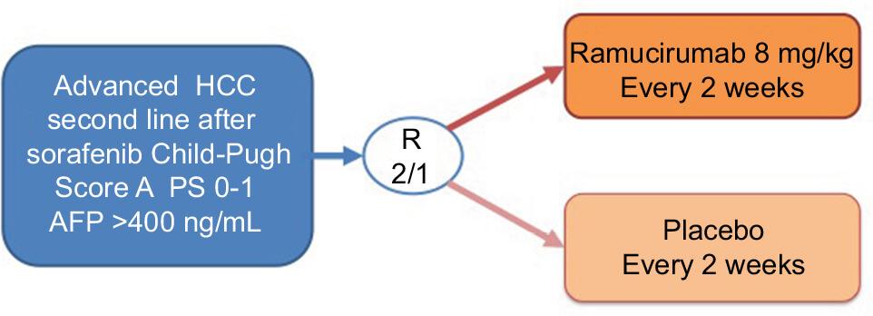 Studiu REACH-2 ramucirumab carcinom hepatocelular
