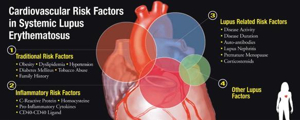Factorii de risc cardiovascular prezenți la pacienții cu lupus eritematos sistemic