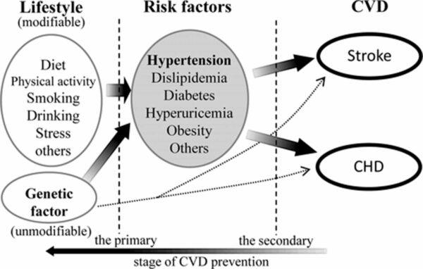 preventia bolii cardiovasculare