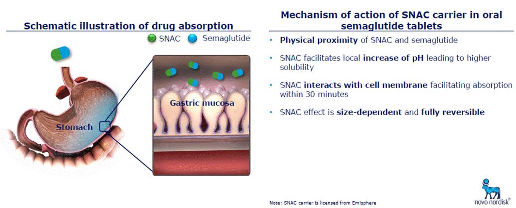 Mecanismul de absorbție al semaglutidei orale