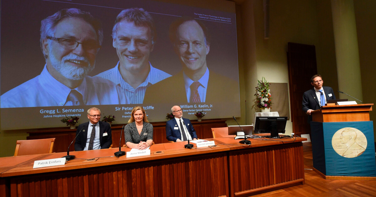 Anunțarea câștigătorilor Premiului Nobel pentru Medicină