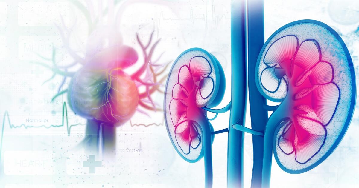 Inhibitorii de SGLT2, antidiabetice cu efect cardiovascular