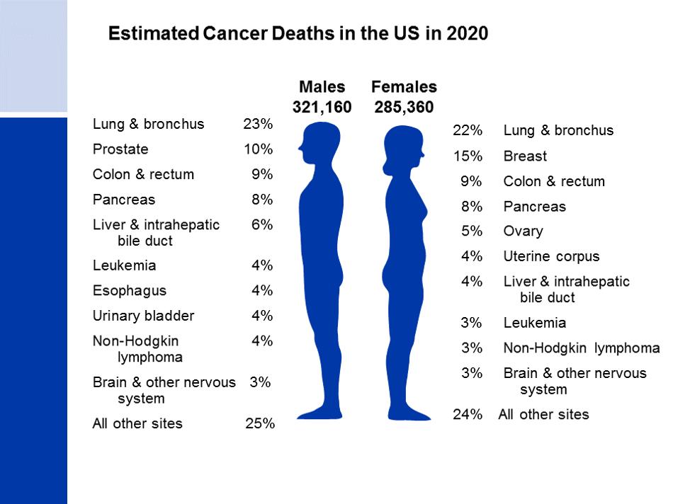 Reprezentare grafică statistici rata mortalitate în SUA în 2020