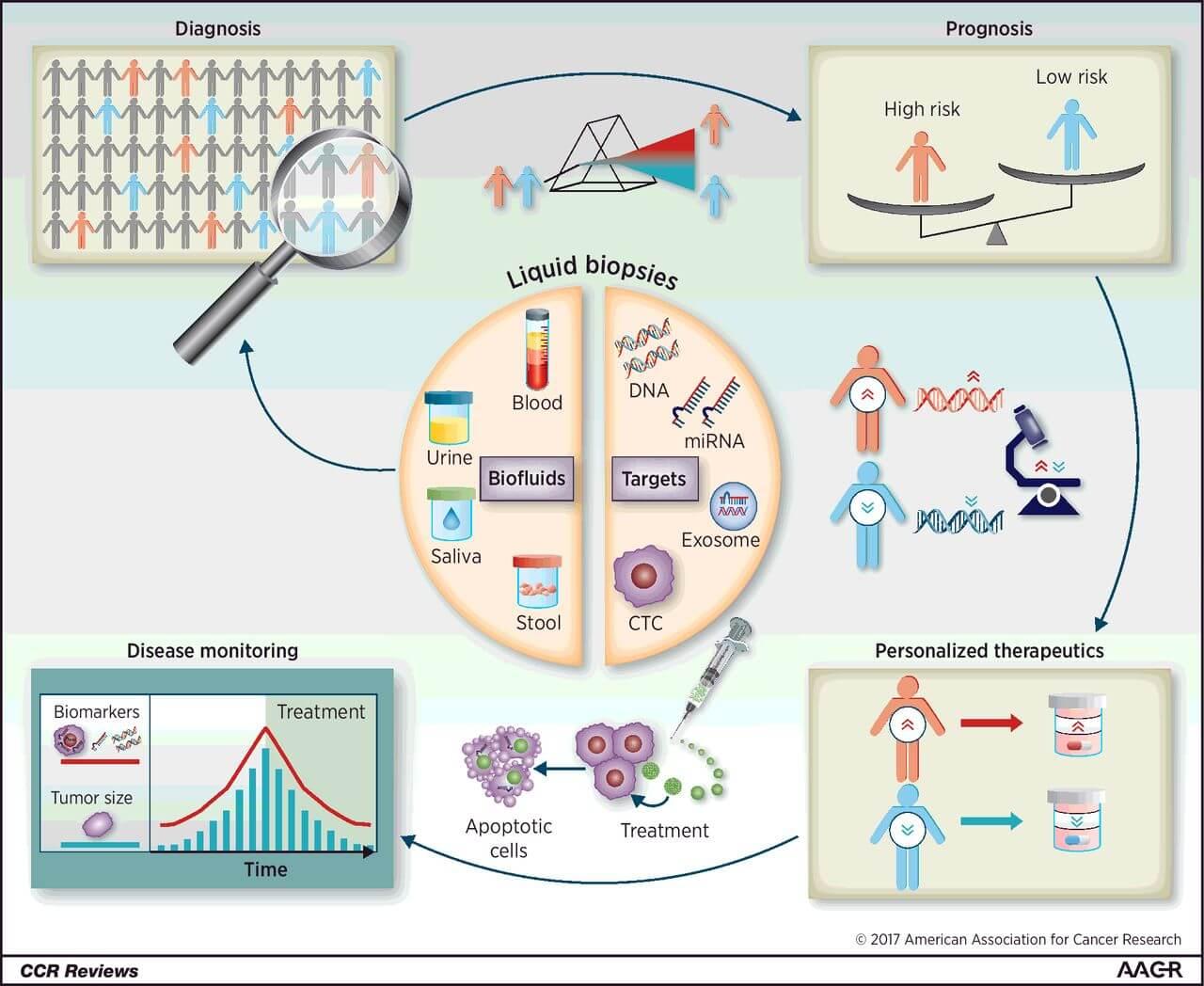biopsie lichida diagnostic tratament personalizat