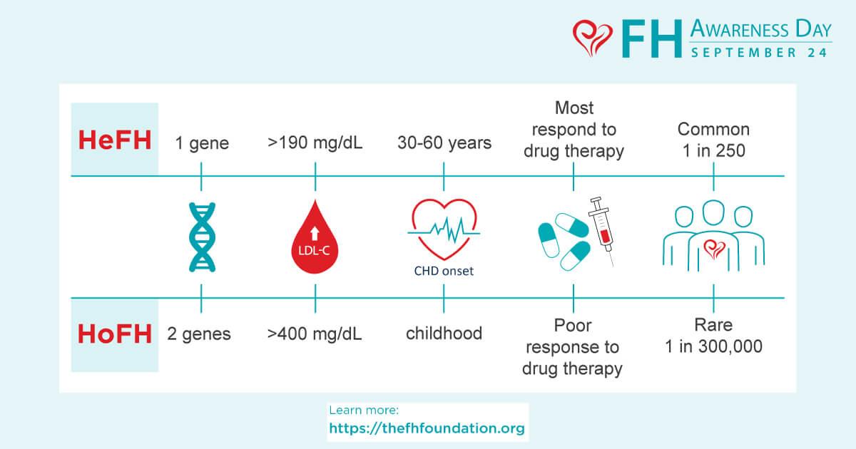 Diferențele dintre hipercolesterolemia familială heterozigotă și homozigotă