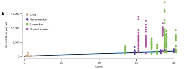 Grafic rezultat studii mutații ADN în funcție de statutul de fumător