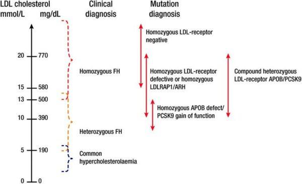 Grafic corespondență valori LDL-L, diagnostic clinic, diagnostic genetic.