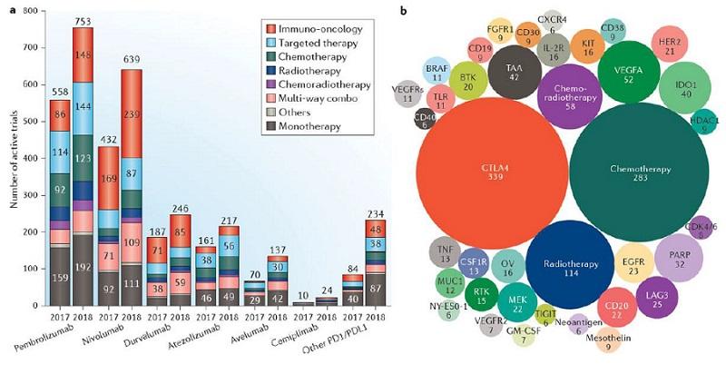 Imaginea de ansamblu a studiilor în imuno-oncologie