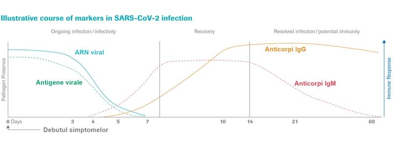 evoluție markeri virali SARS-CoV-2 COVID-19 IgG IgM anticorpi antigene ARN viral Roche Diagnostics