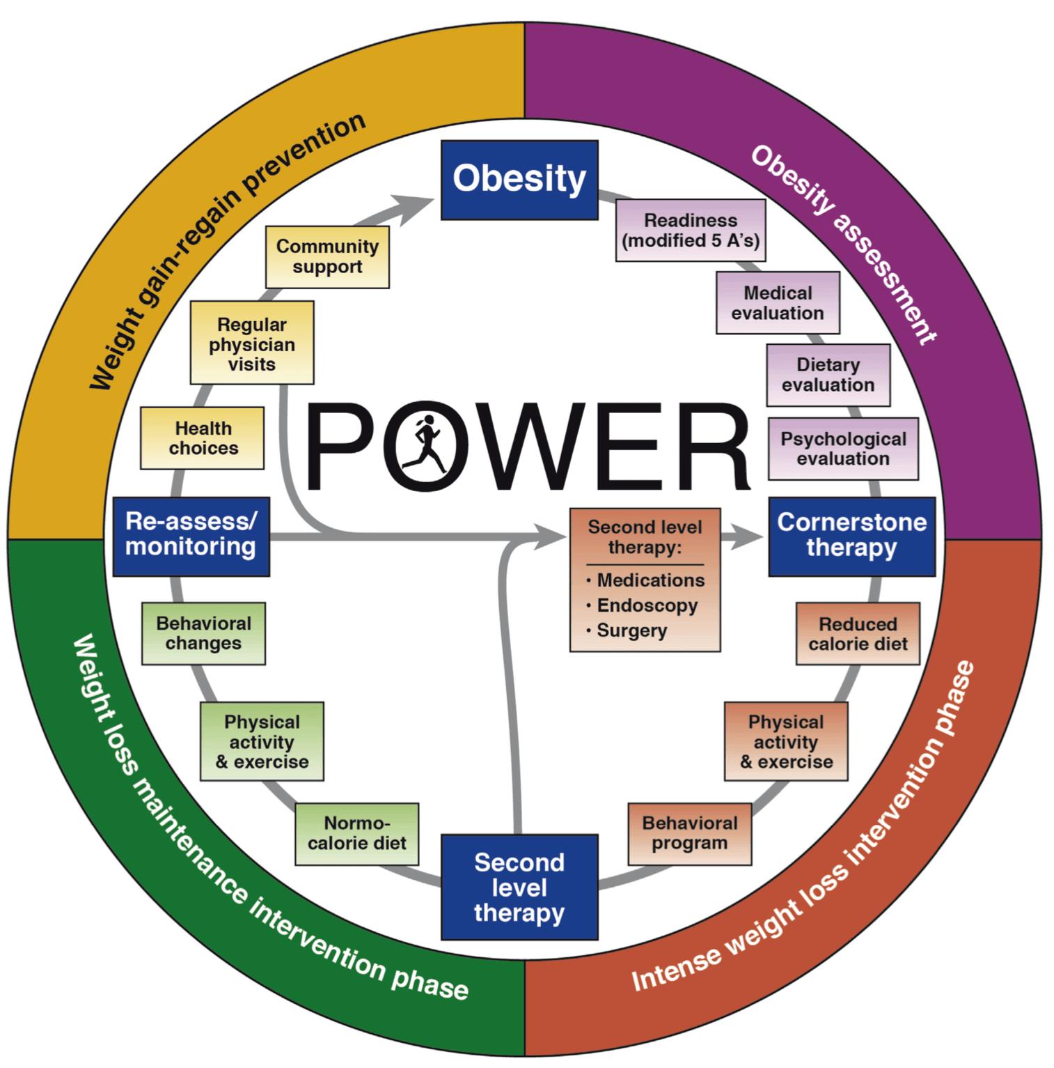program POWER obezitate
