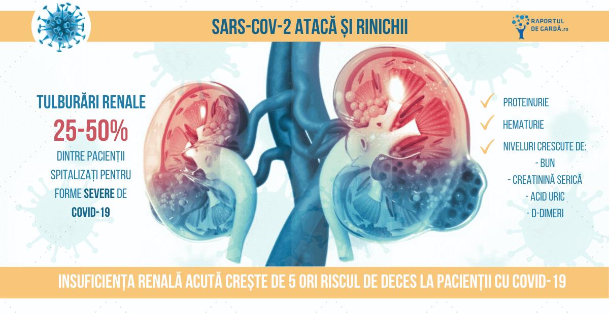SARS-CoV-2 rinichi