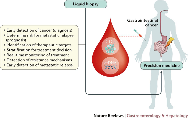 biopsia lichida rol