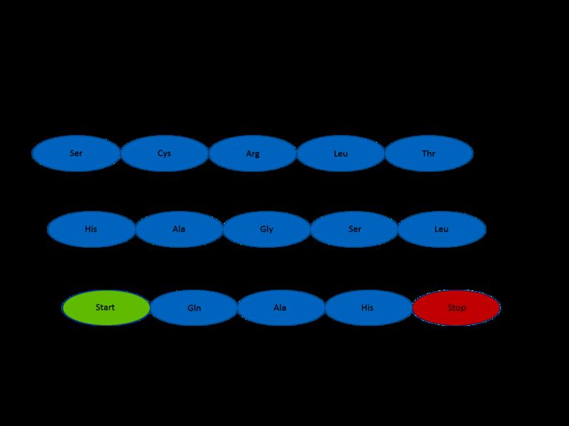 Schema cadrelor de citire a codului genetic