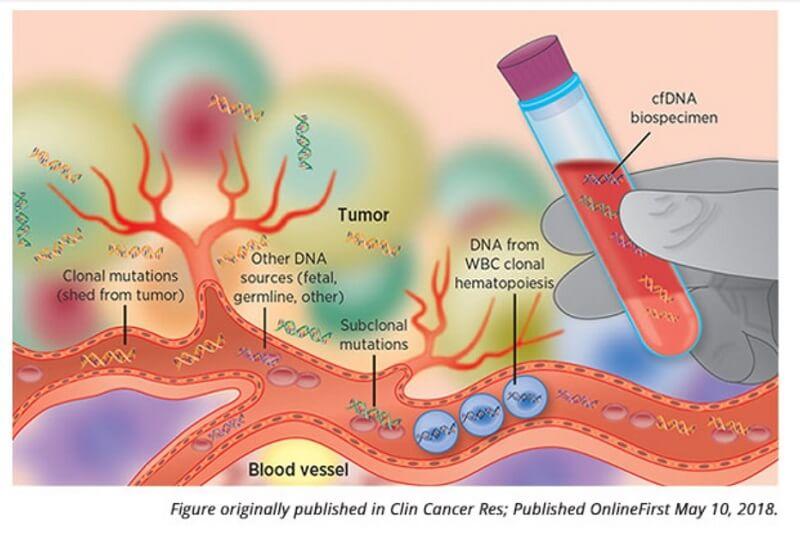 biopsia lichidă AACR 2020 detecție precoce cancer