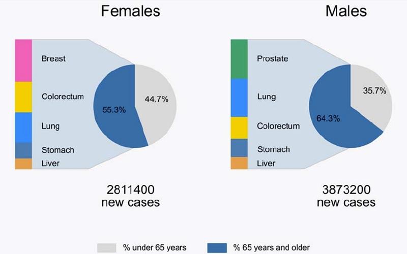 asco20 cancer vârstnici femei bărbați sân colroectal plămâni stomac ficat prostată