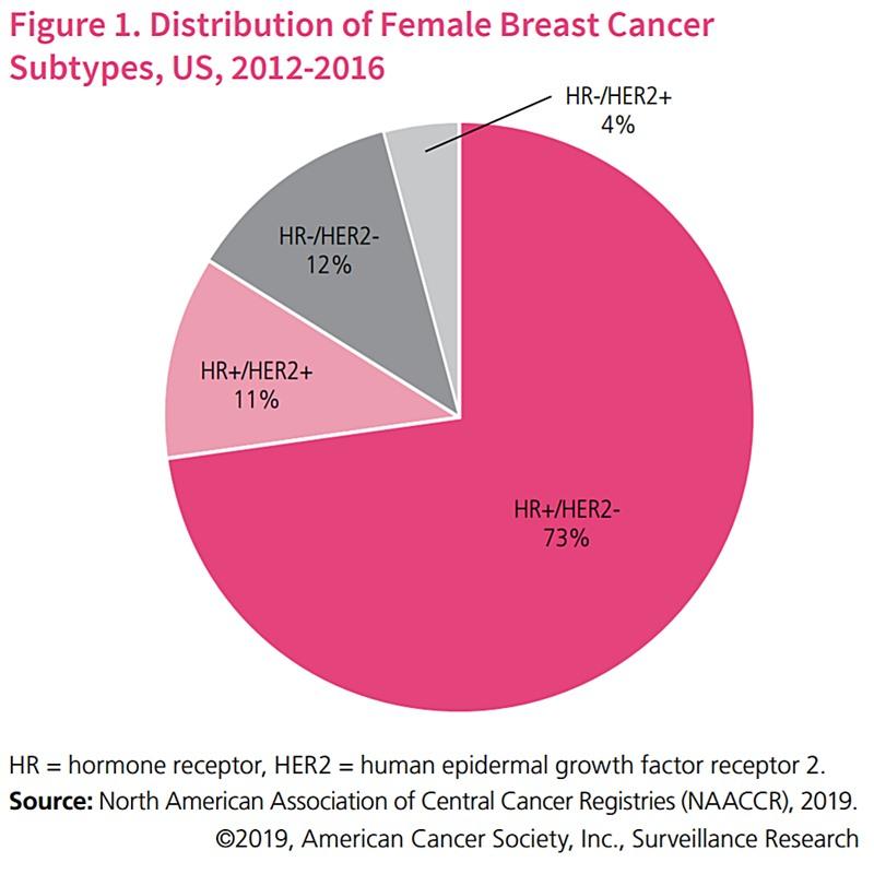 distribuție forme cancer mamar SUA 2019 receptor hormon HER2 HR