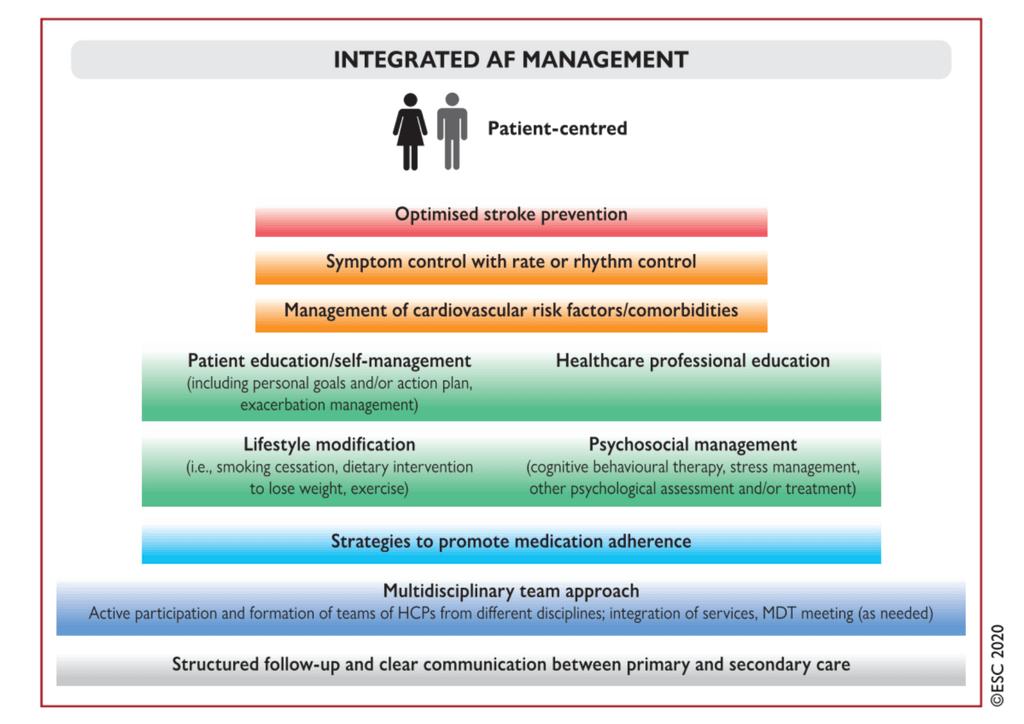 Componentele managementului integrat al fibrilației atriale