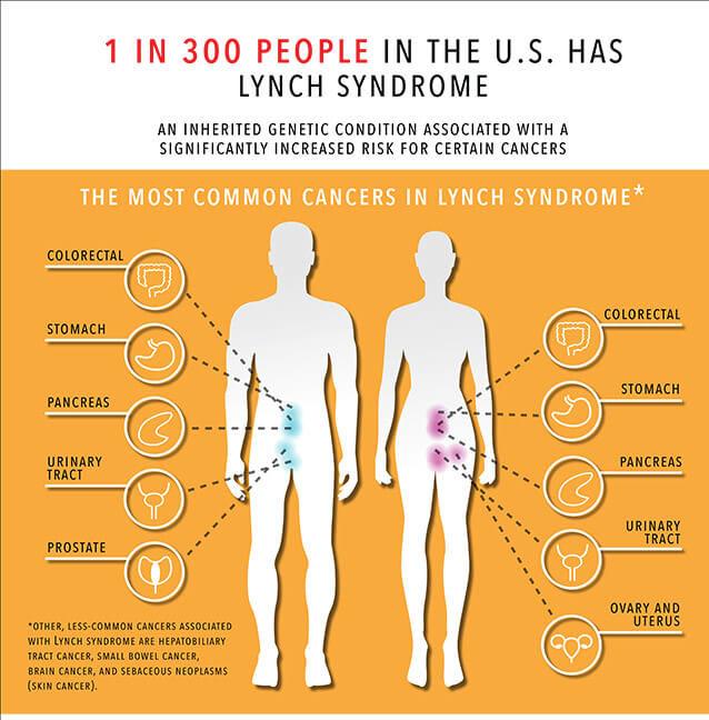 Sindromul Lynch - infografic