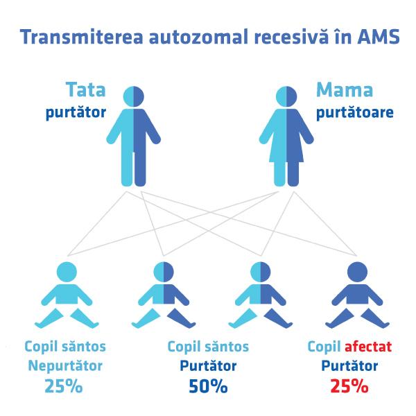 Transmitere genetica autzomal recesiva atrofia spinala
