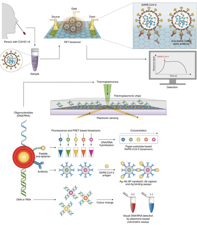 Biosenzori utilizați în diagnosticul SARS-CoV-2